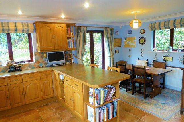 Kitchen of Cole Moore Meadow, Tavistock PL19