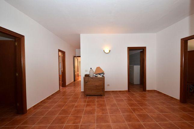 Central Room of La Mata, Tiquital 8, Spain