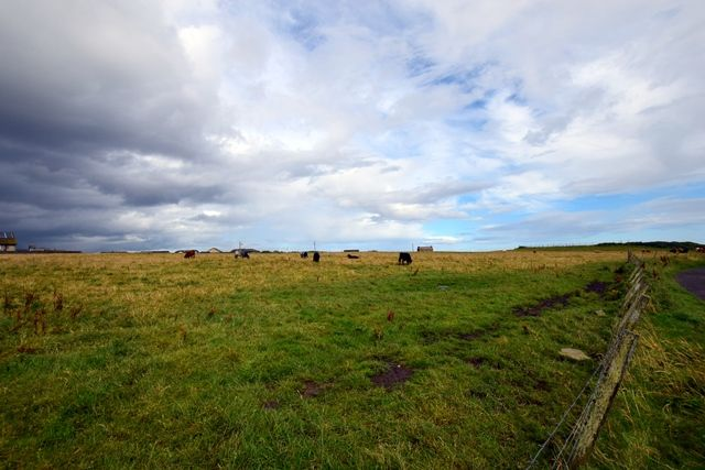 Thumbnail Land for sale in Land At Broadhaven Farm, Wick