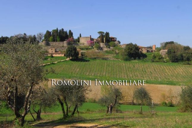 Farm for sale in Siena, Tuscany, Italy