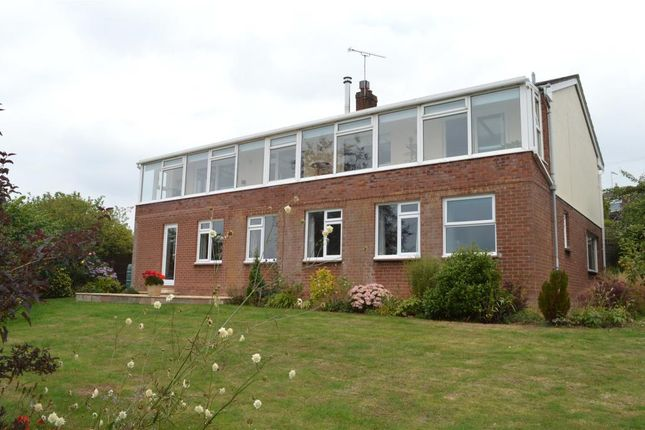 Thumbnail Detached house for sale in Chapel Downs Drive, Crediton, Devon
