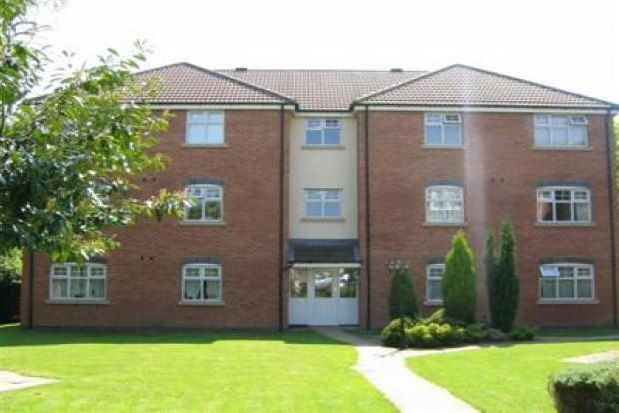 Thumbnail Flat to rent in 317 Burton Road, Derby