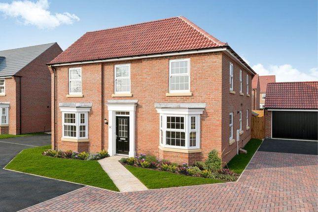 "Thumbnail Detached house for sale in ""Eden"" at Whites Lane, New Duston, Northampton"