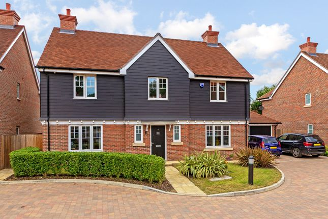 Thumbnail Detached house for sale in Salix Close, Welwyn