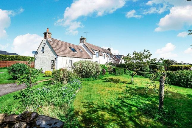 Thumbnail Semi-detached house for sale in Duncanston, Dingwall
