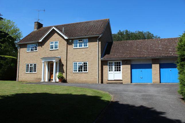 Thumbnail Detached house for sale in Hardwick Park Gardens, Bury St. Edmunds