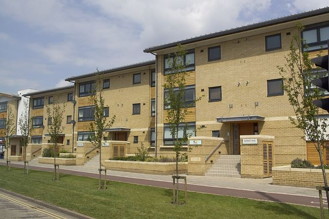 Thumbnail Flat to rent in Market Rise, Cherry Hinton Road, Cambridge