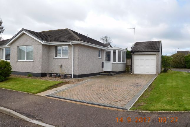 Thumbnail Bungalow to rent in Liberator Way, Dunkeswell