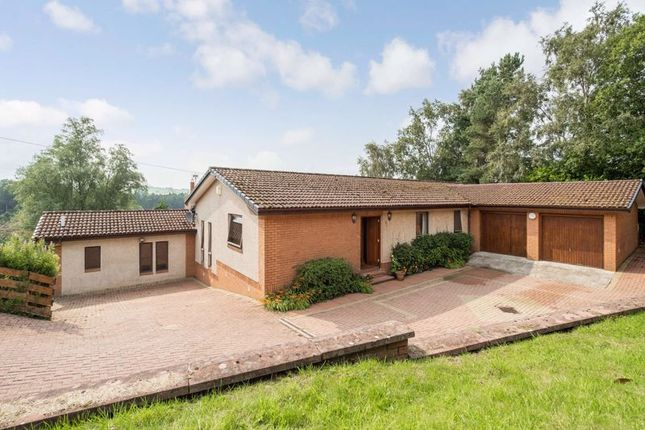 Thumbnail Detached house for sale in Braxfield Road, Lanark