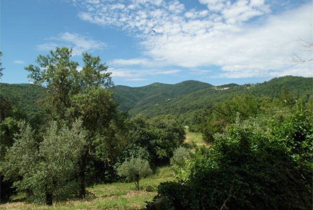 The View of Casale Meraviglia, Anghiari, Arezzo, Tuscany, Italy
