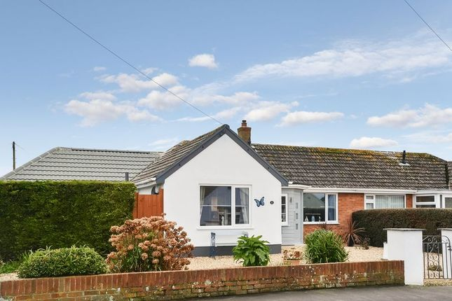 Thumbnail Semi-detached bungalow for sale in Smardon Avenue, Brixham