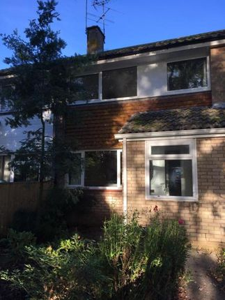 Thumbnail Terraced house to rent in Wilbury Way, Dawlish
