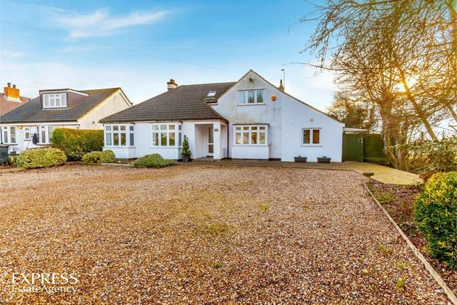 Thumbnail Detached bungalow for sale in Lindsey Street, Epping, Essex