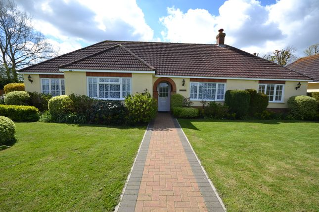 Thumbnail Detached bungalow to rent in Spencers Piece, School Road, Langham, Colchester