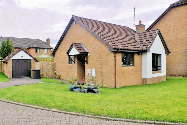 Thumbnail Bungalow for sale in Braidpark Drive, Giffnock, Giffnock