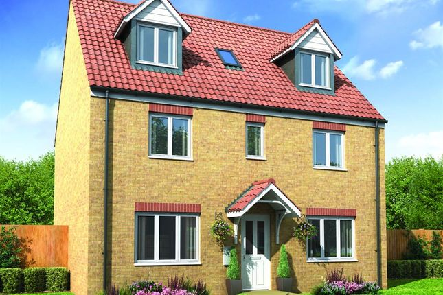 "Thumbnail Detached house for sale in ""The Newton"" at Off Fisher Lane, Beacon Lane, Cramlington"