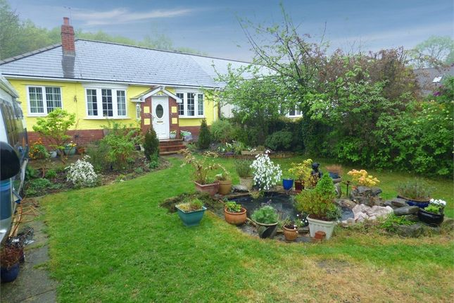 Thumbnail Semi-detached bungalow for sale in Catsash Road, Langstone, Newport