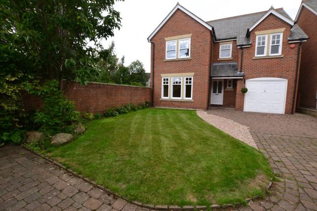 Thumbnail Detached house to rent in Cottingwood Lane, Morpeth