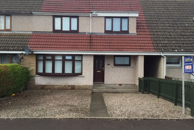 Thumbnail Terraced house to rent in 17 Stynie Road, Mosstodloch