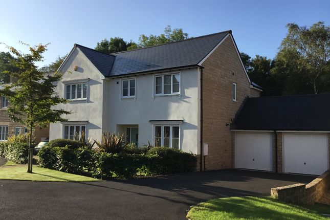 Thumbnail Detached house for sale in The Glade, High Peak