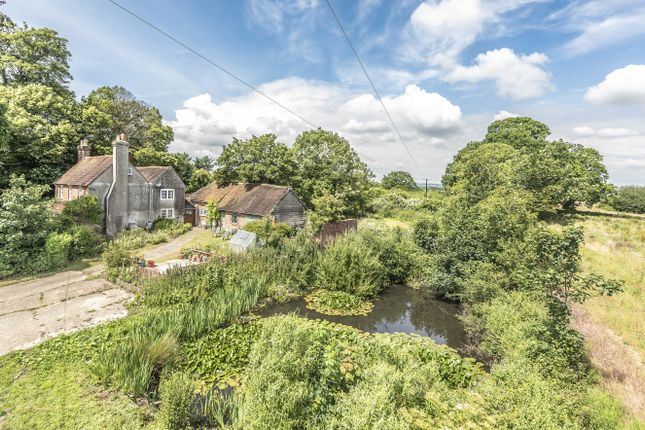 Thumbnail Detached house for sale in Newlands Lane, Purbrook Heath