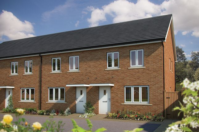 "Thumbnail Terraced house for sale in ""The Holly "" at Amesbury Road, Longhedge, Salisbury"