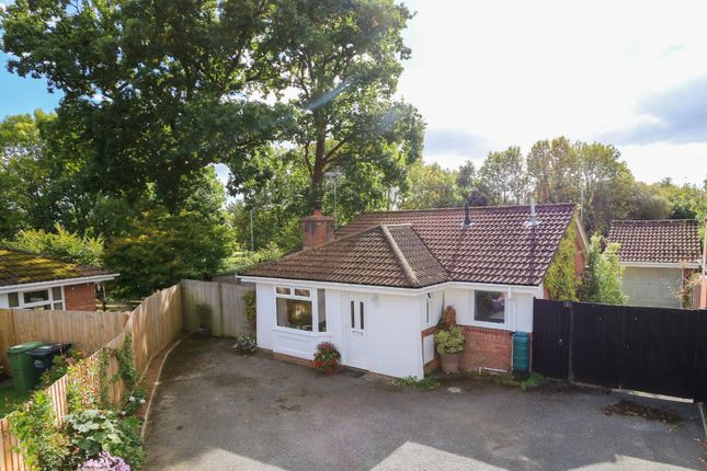 Thumbnail Detached bungalow for sale in Drake Road, Bovey Tracey, Newton Abbot