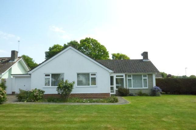 Thumbnail Bungalow to rent in Talbot Drive, Highcliffe, Christchurch