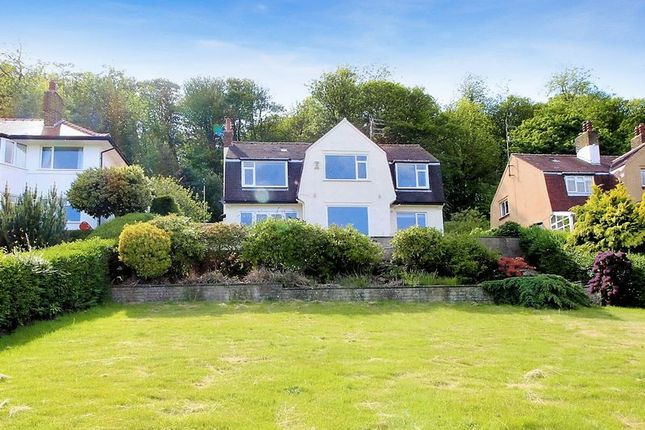 Thumbnail Detached house for sale in Deepdale Avenue, Scarborough