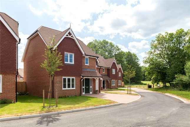 Thumbnail Detached house for sale in Water Meadow Place, Shackleford Road, Elstead, Surrey