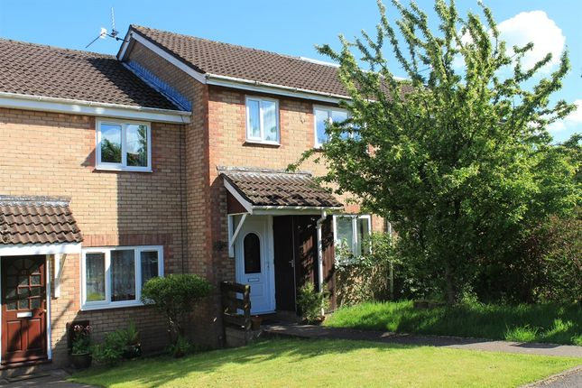 Thumbnail Terraced house for sale in Pinecrest Drive, Thornhill, Cardiff