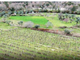 Thumbnail Farm for sale in Cabacos, Alvaiázere, Leiria, Central Portugal